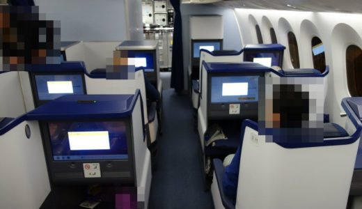 ANAビジネスクラス搭乗記(パリ⇒羽田 NH216 B787-900)機種機材・座席・機内食など