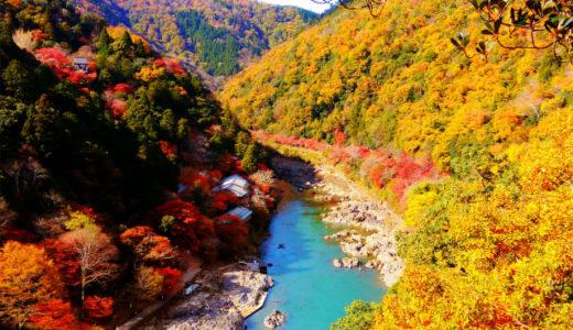 【不労所得旅】福岡生活で旅した1年を振り返る!後半戦での決意と告知とは