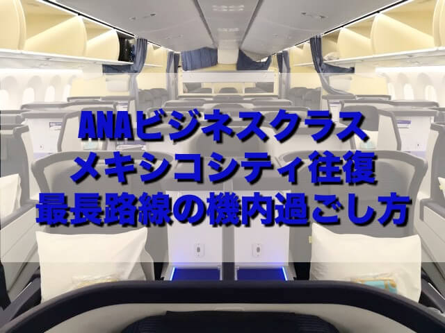 【ANAビジネスクラス搭乗記】成田-メキシコシティ往復 NH180/NH179 アメニティ一新!最長路線における機内の過ごし方