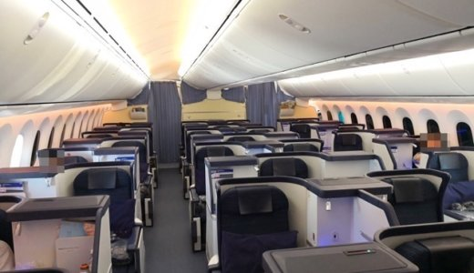 【ANAビジネスクラス搭乗記】成田-ムンバイNH829完全レビュー 機種機材・座席・機内食など
